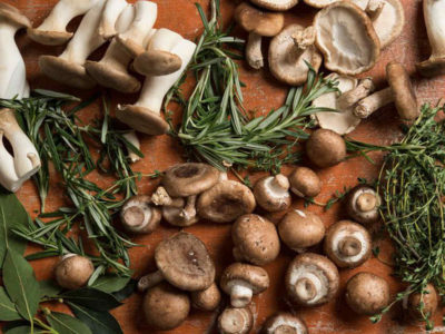 Did You Know This About Mushrooms?