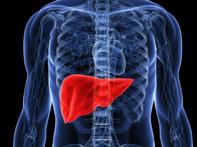 Signs Of A Fatty Liver