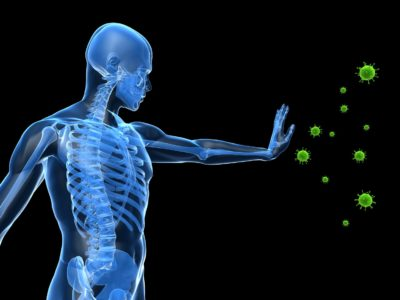 The Extraordinary Power Of Your Immune System