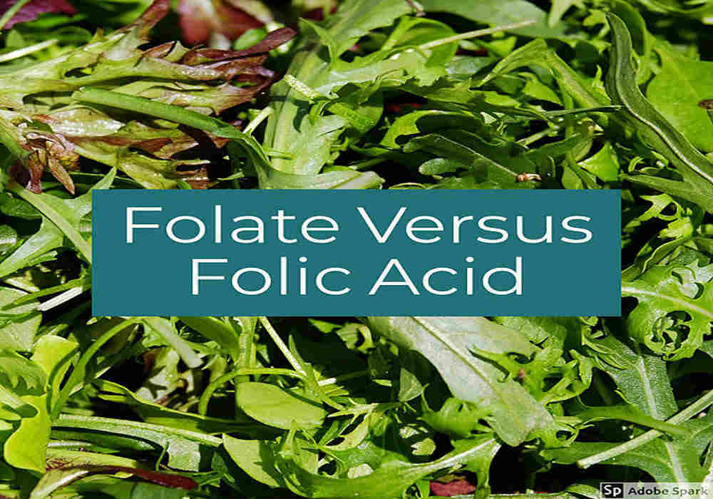 folate vs folic