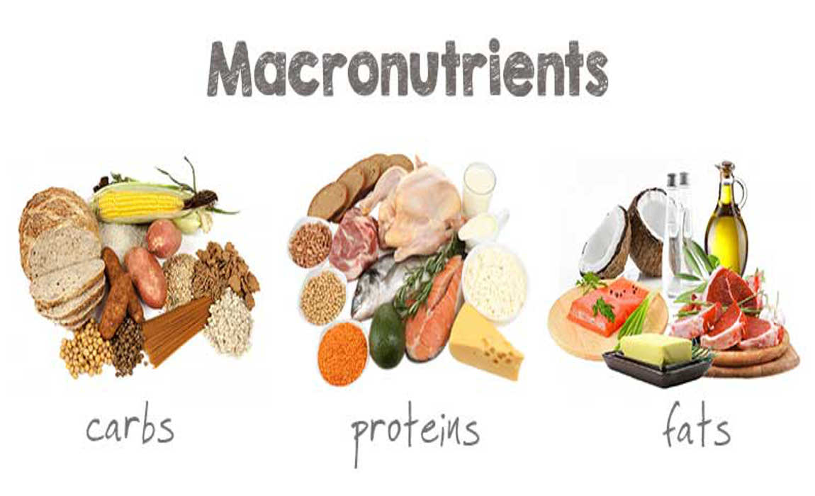 What Are Macronutrients & Micronutrients? (And Why You Should Care)