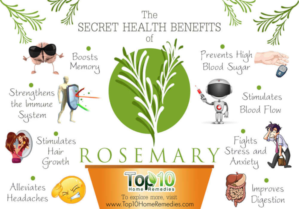 10 Secret Health Benefits of Rosemary