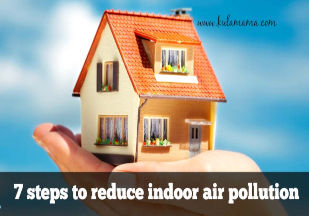 7 Easy Steps to Reduce Indoor Air Pollution